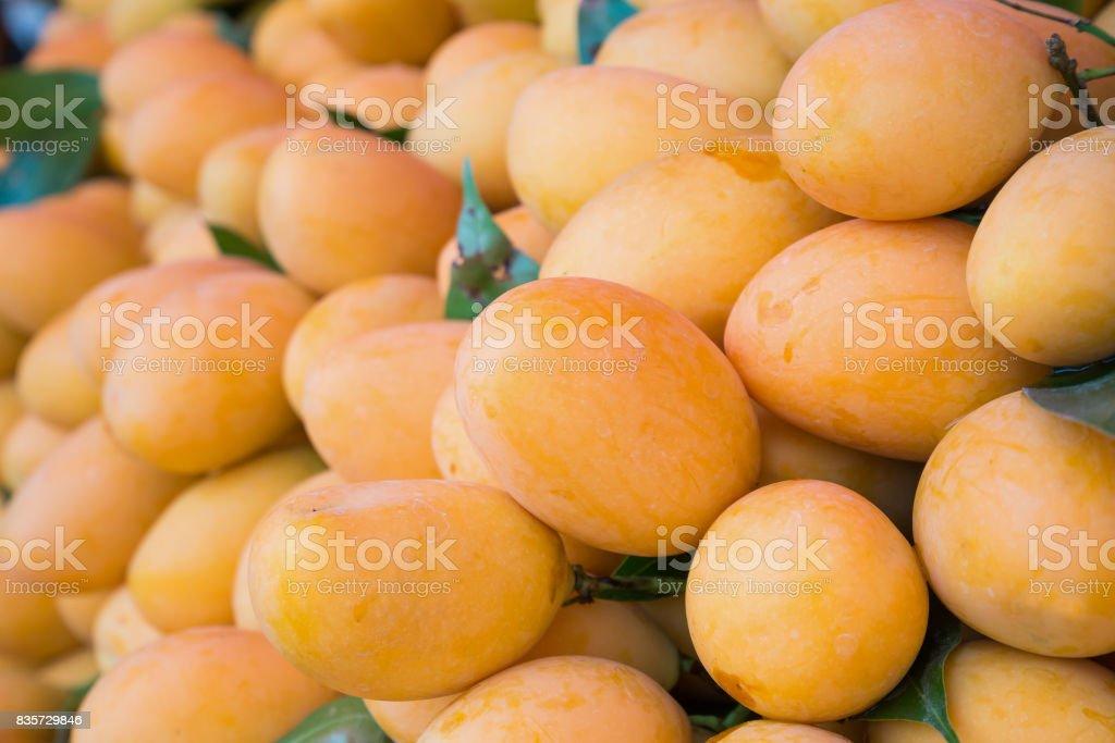 Fresh ripe Marian Plum, Mayongchid, Maprang, Plum Mango, tropical Thai fruit stock photo