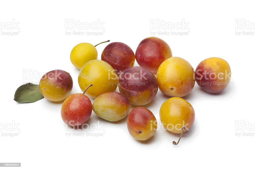 Fresh ripe mirabelle plums stock photo