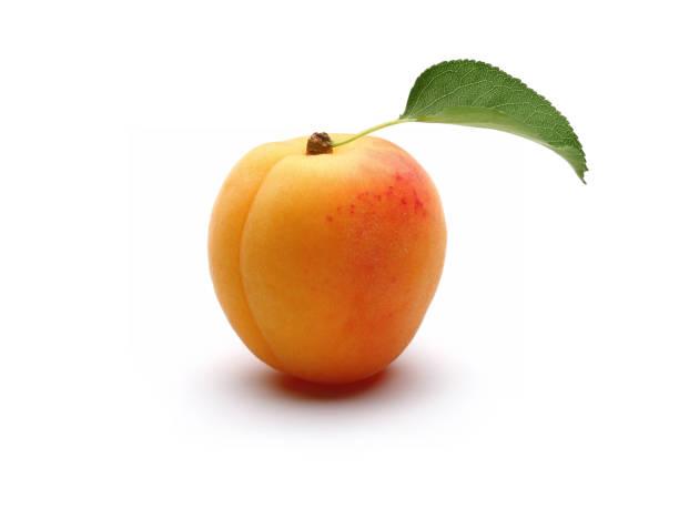 frische reife eine aprikose mit blatt - aprikose stock-fotos und bilder