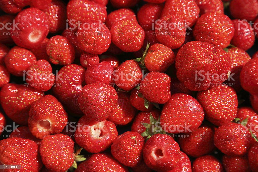Fresh ripe strawberries newly picked Lots of fresh red strawberries!Some other food images in my portfolio: Agriculture Stock Photo