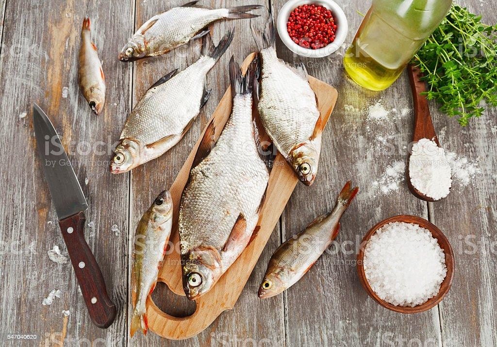 Fresh river fish stock photo