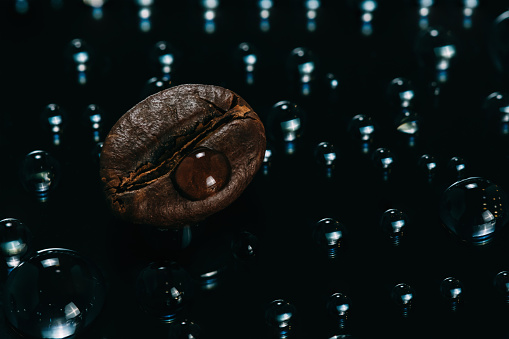 Fresh Roasted Coffee Macro Beans On Glass Background With
