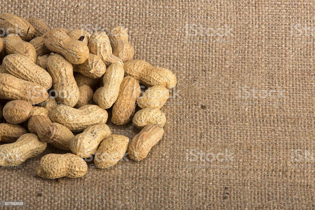 Fresh Roasted Peanuts stock photo