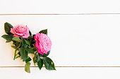 istock fresh rose flowers 1129693369