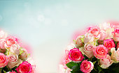 istock fresh rose flowers 1129869632
