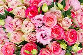 istock fresh rose flowers 1131687616