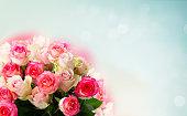 istock fresh rose flowers 1131690301