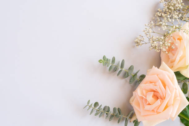 Fresh rose flowers picture id912294800?b=1&k=6&m=912294800&s=612x612&w=0&h=mo23dwyb02l36aznfygcarbwbhwbzrt6dpz7rpxqrqs=