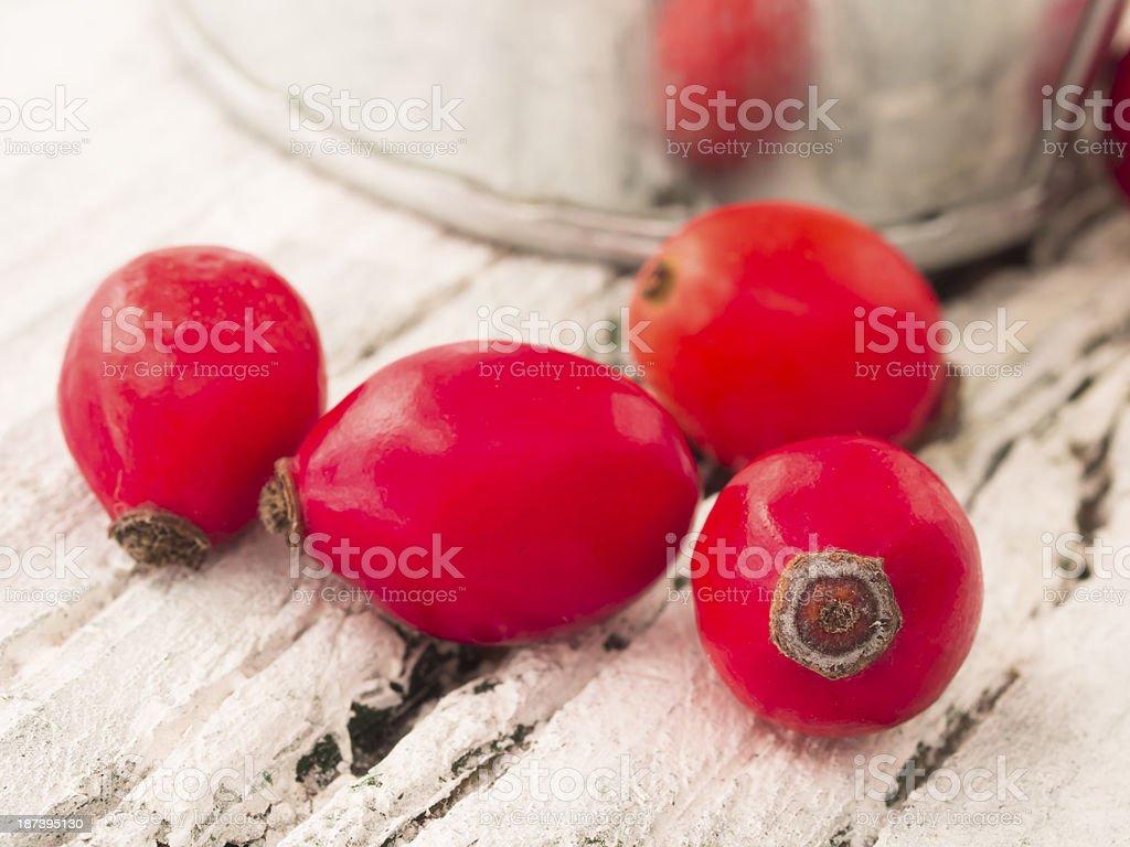 fresh rosehips stock photo