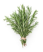 Fresh rosemary bunch isolated on white background