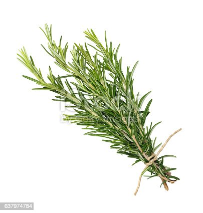 A dark bottle of rosemary essential oil with fresh rosemary twigs