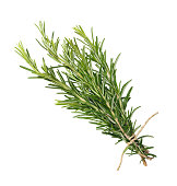 rosemary bunch tied  isolated on white background