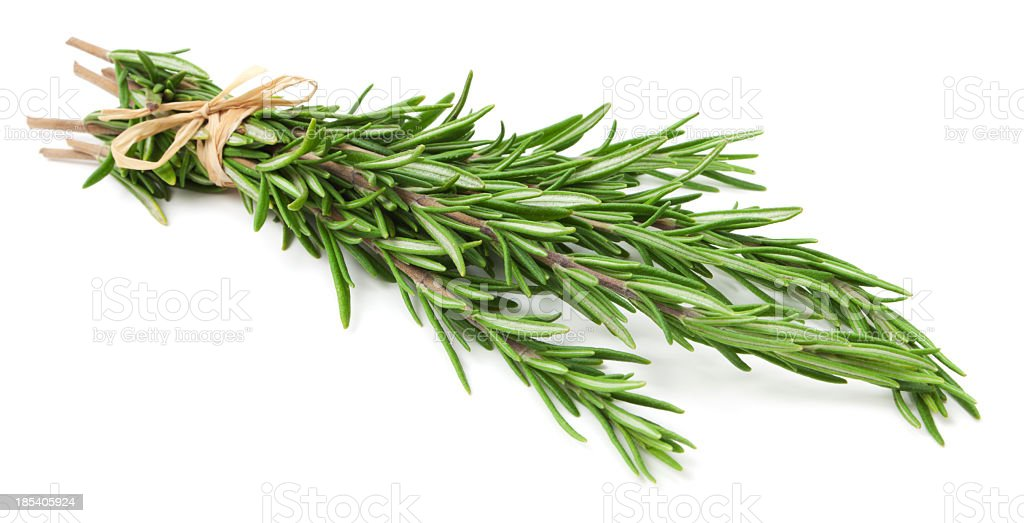 Fresh rosemary herb on white background stock photo