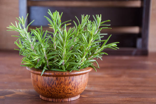 Fresh rosemary on a wooden background Fresh rosemary on a wooden background rosmarino stock pictures, royalty-free photos & images
