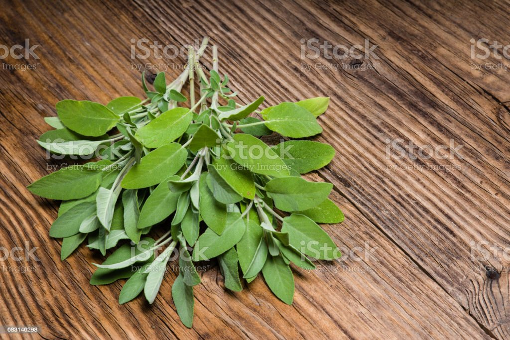 Fresh sage herb on wooden table royalty-free 스톡 사진