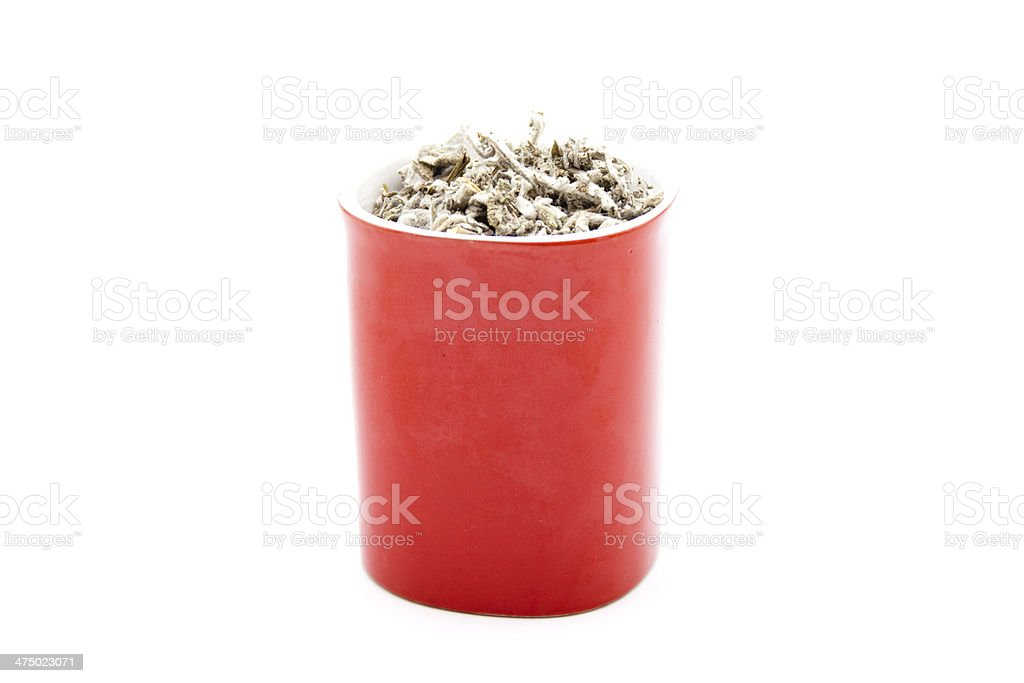 Fresh Sage in Red Coffeecup stock photo