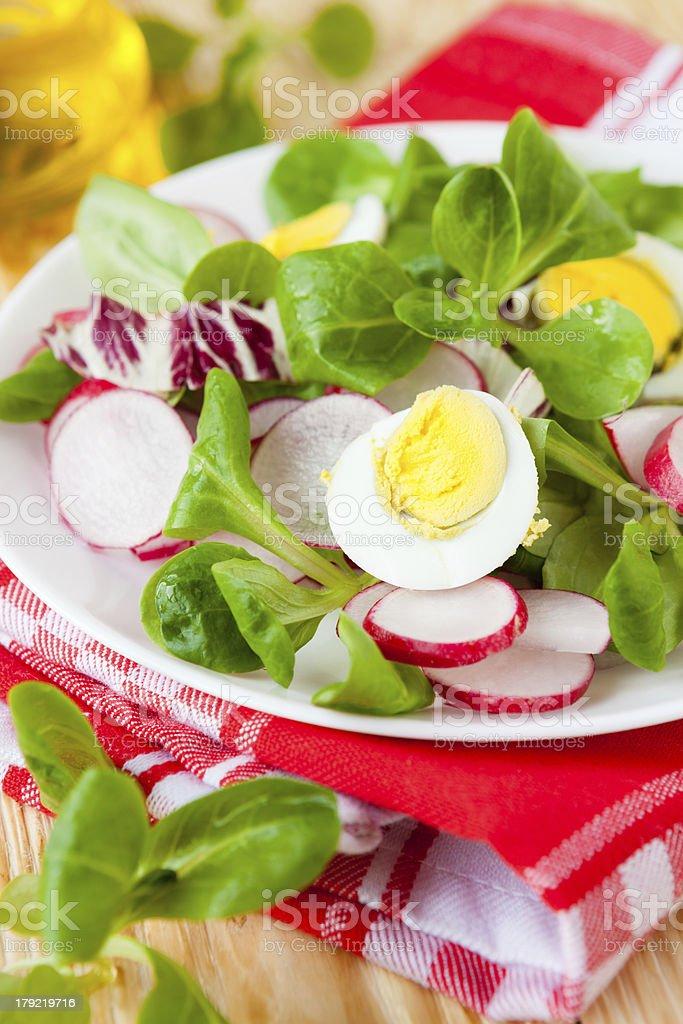 Fresh salad of radish and greens, eggs royalty-free stock photo