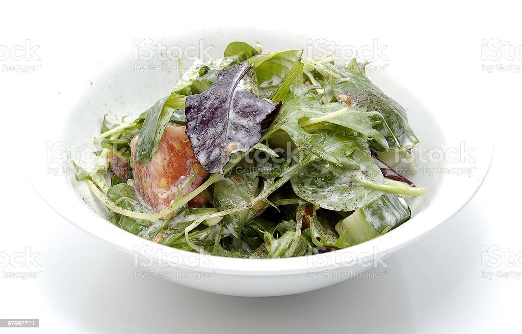 Fresh Salad royalty free stockfoto