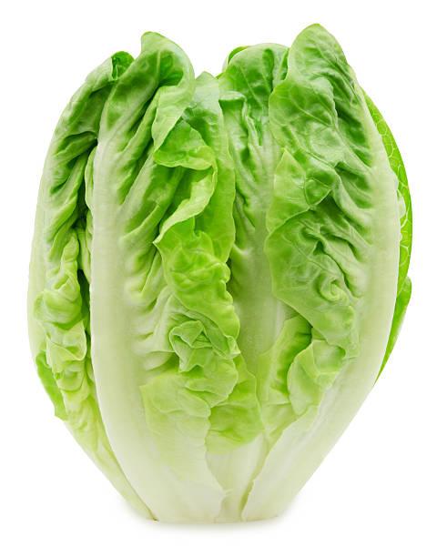 Fresh salad romaine lettuce Fresh salad romaine lettuce isolated on white background romaine lettuce stock pictures, royalty-free photos & images