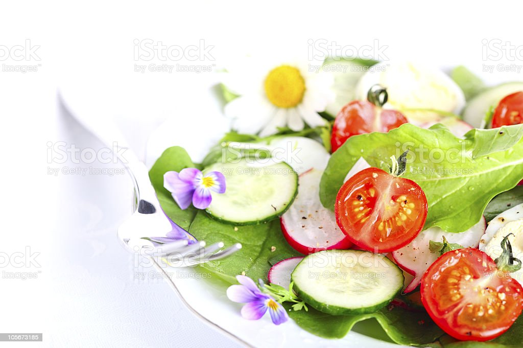 Fresh salad with radishes, tomatoes and cucumbers royalty-free stock photo