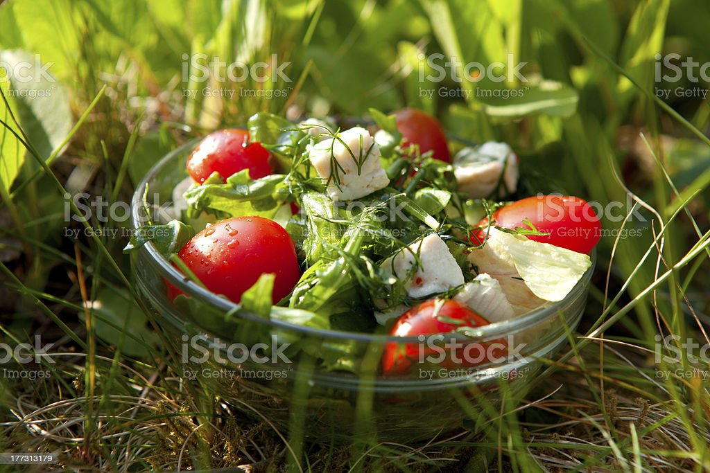 fresh salad with tomato and cucumber royalty-free stock photo