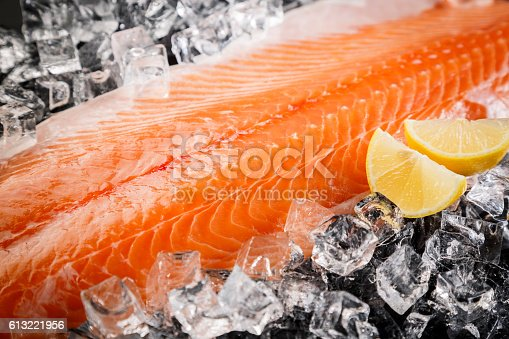 Fresh Salmon Fish  on the Black Background