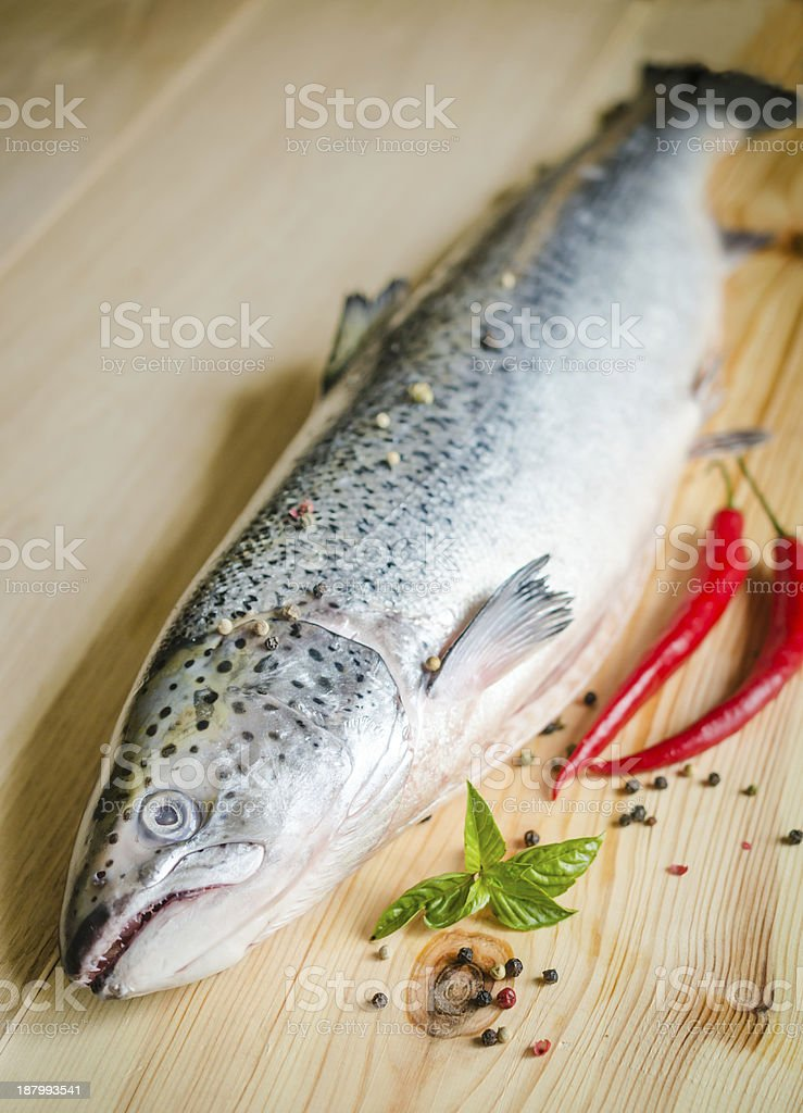 Fresh salmon with spices royalty-free stock photo