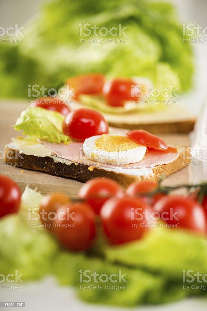 Fresh Sandwich royalty-free stock photo