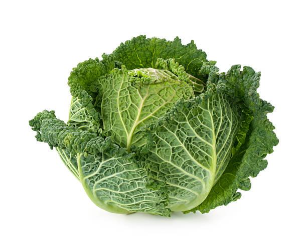 Frische savoy cabbage – Foto