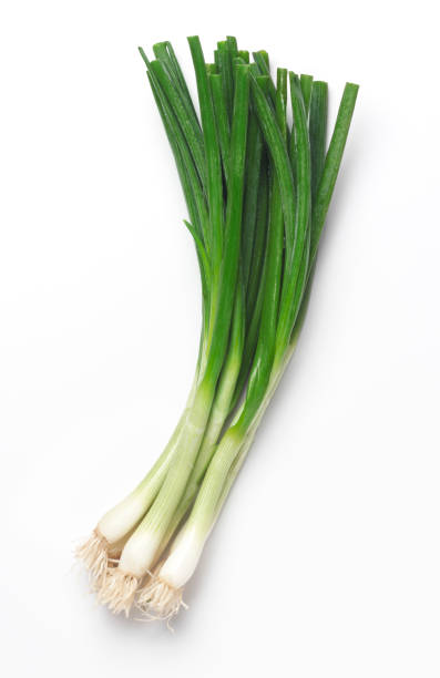 fresh scallions - bosui stockfoto's en -beelden