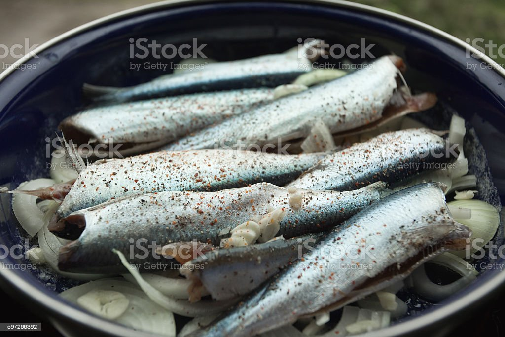 Fresh sea fish in caserole ready for baking royalty-free stock photo