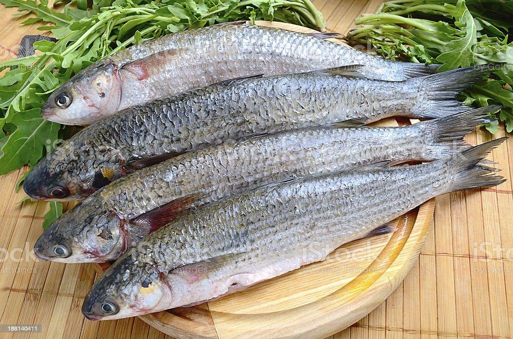 Fresh sea fish royalty-free stock photo