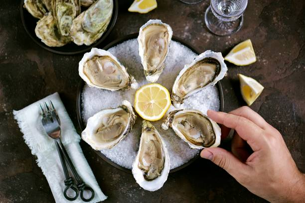Fresh sea oysters on a large sea salt with lemon. Healthy food, gourmet food, restaurant food. stock photo