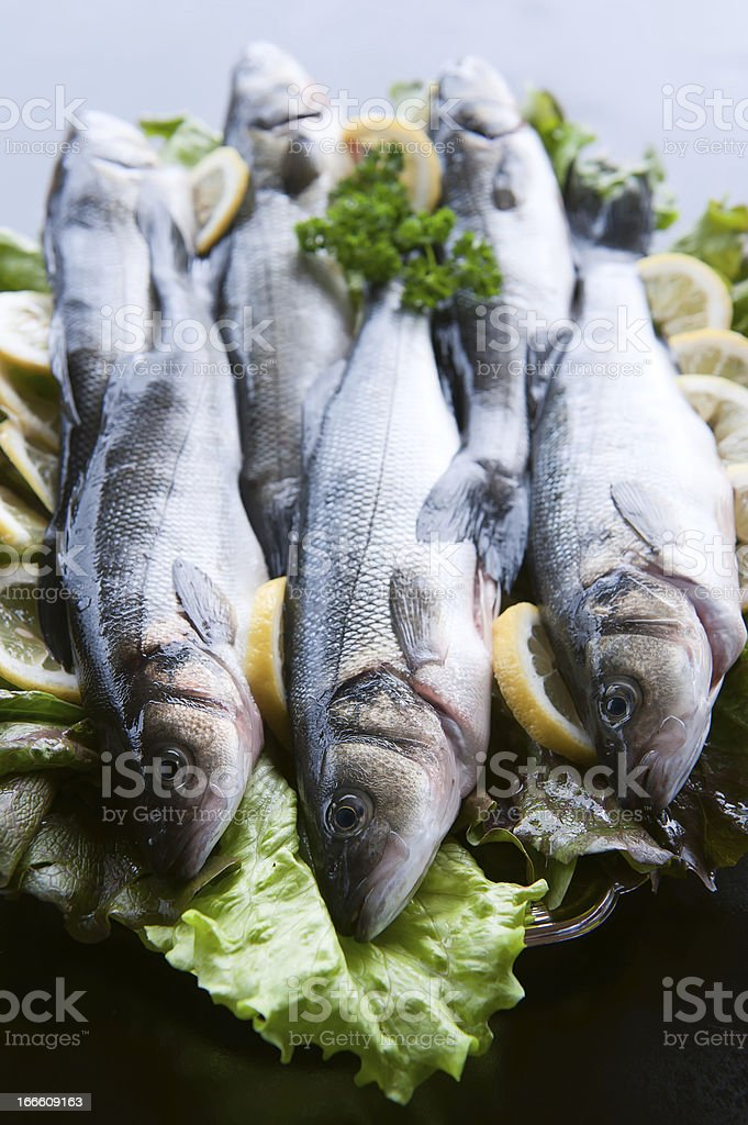 Fresh Seabass royalty-free stock photo