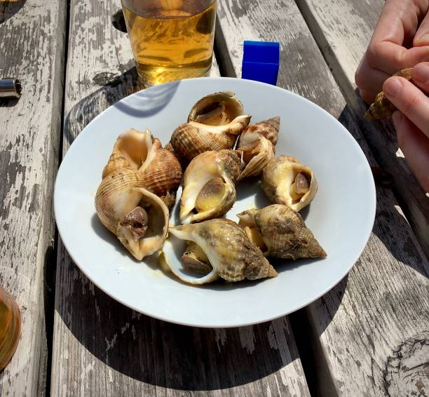 Fresh seafood and a beer by the beach. See stock photo