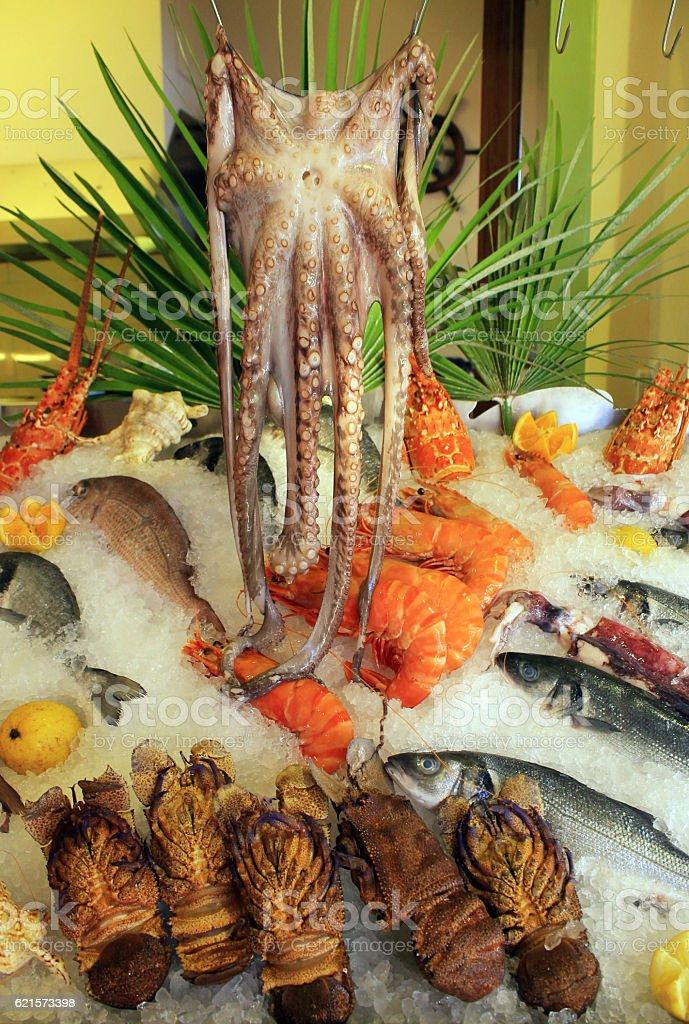 Arrangement de fruits de mer de prime fraîcheur présentés au marché photo libre de droits