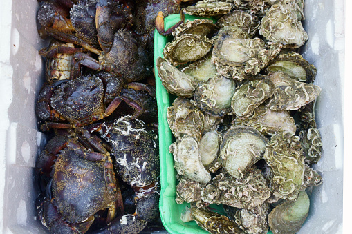 istock fresh seafood, fish on the market 970100082