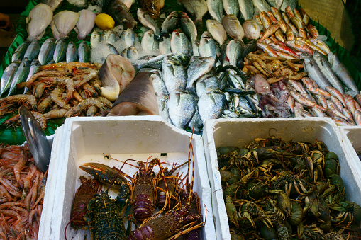istock fresh seafood, fish on the market 970100338