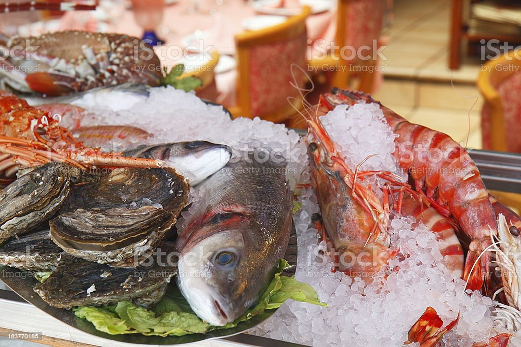 Fresh Seafood in the display of a mediterranean restaurant royalty-free stock photo