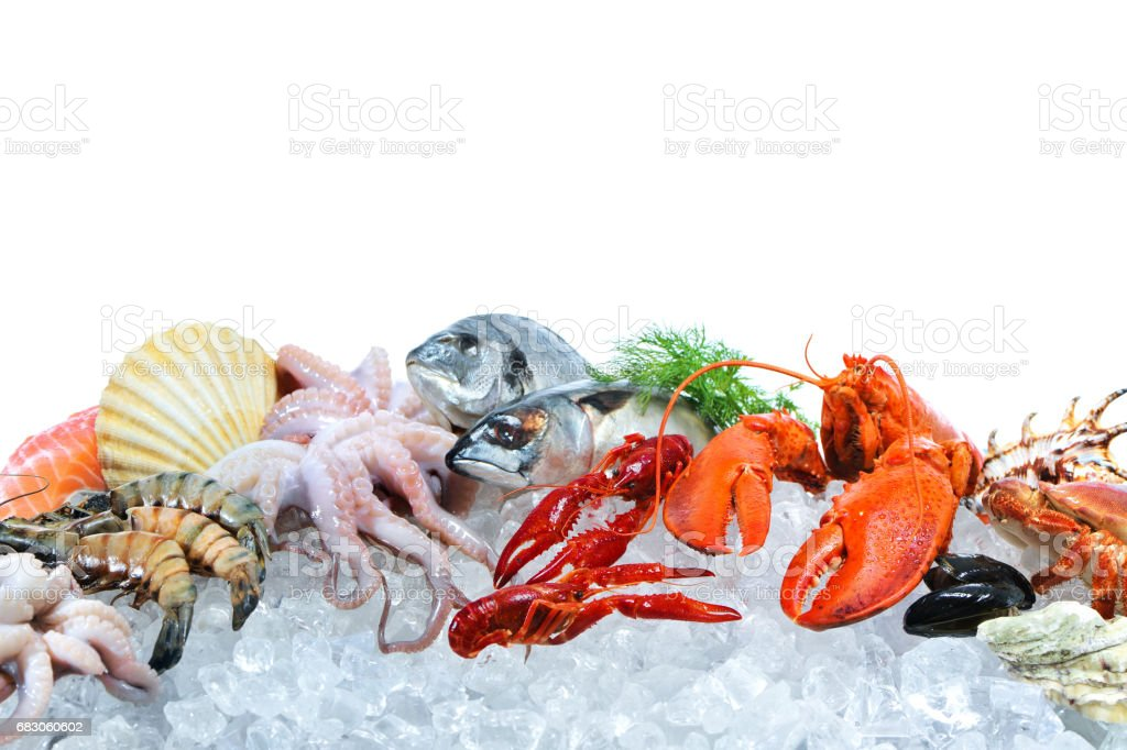 Fresh seafood on crushed ice foto de stock royalty-free