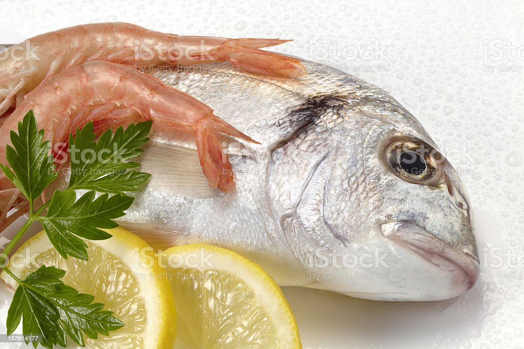 Fresh Seafood royalty-free stock photo
