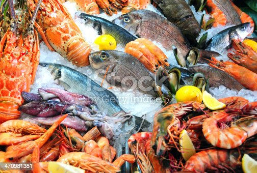Variety of fresh seafood on ice