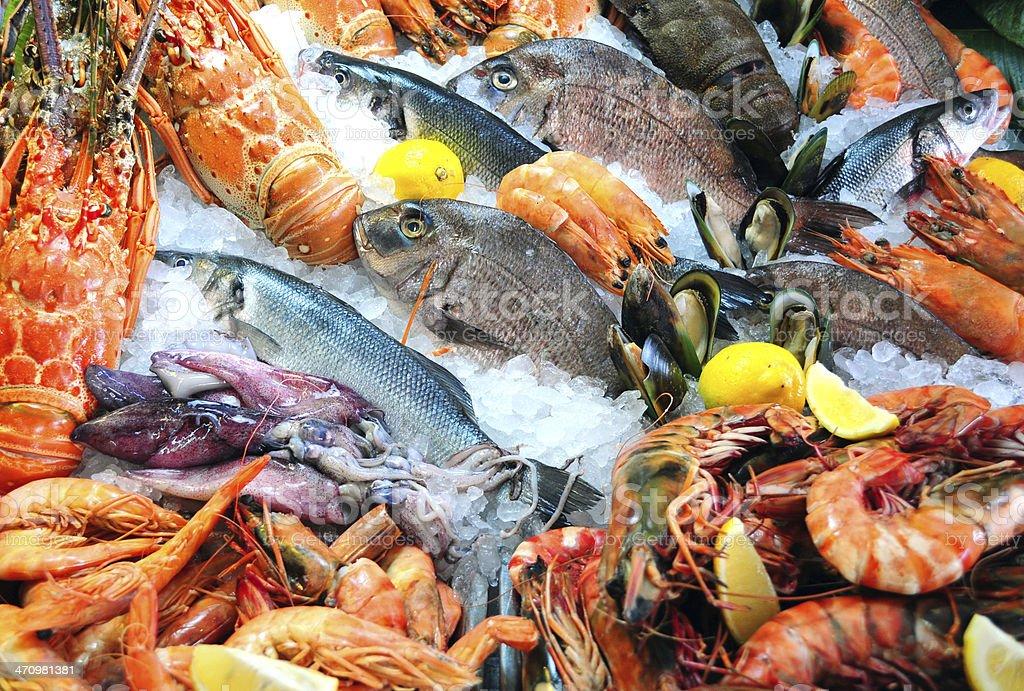 Frutos do mar frescos - foto de acervo