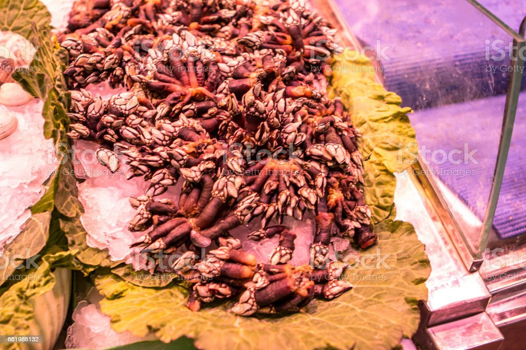 Fresh seafoods at the market in Barcelona royalty-free stock photo