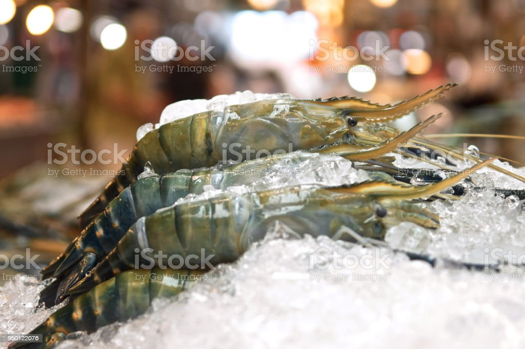 Fresh shrimp on ice at the night market for sell side view. Close up. stock photo