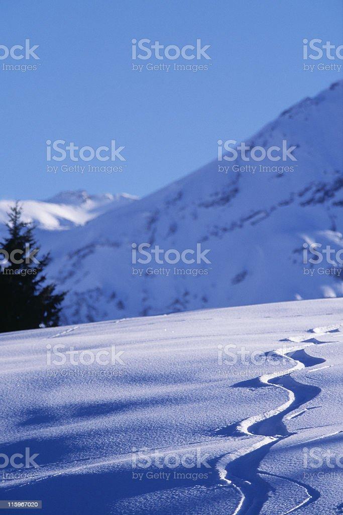 fresh ski traces on a snowed mountain stock photo