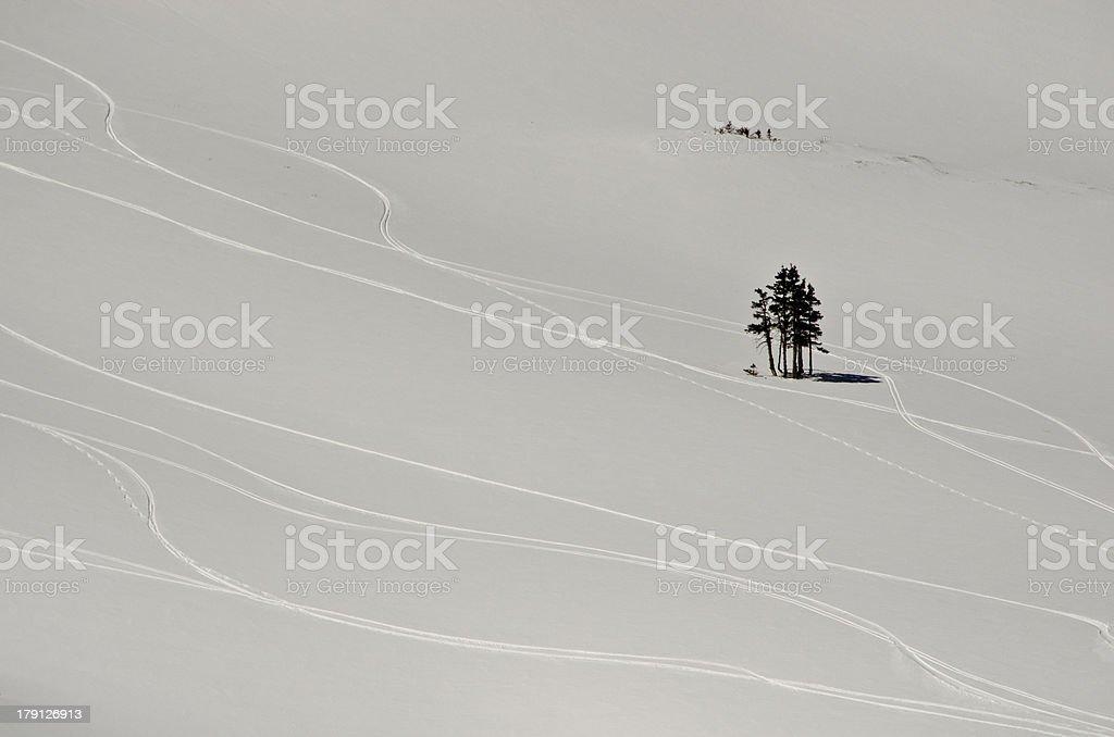 Fresh Ski Tracks in the Alpine Powder Snow royalty-free stock photo