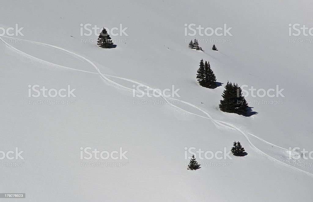 Fresh Ski Tracks in the Alpine Powder Snow royalty-free stock photo