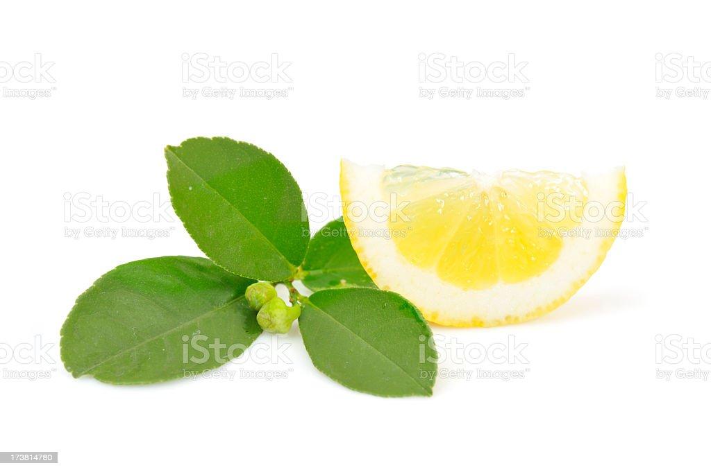 Fresh sliced lemon. royalty-free stock photo