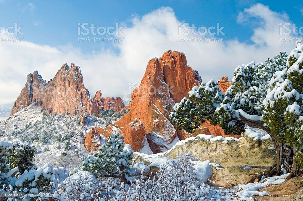Fresh snow at the Garden stock photo